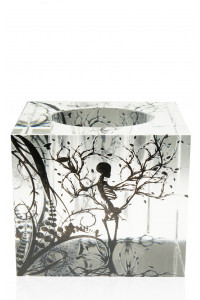 """Nature Box 8"""" Lucite"""