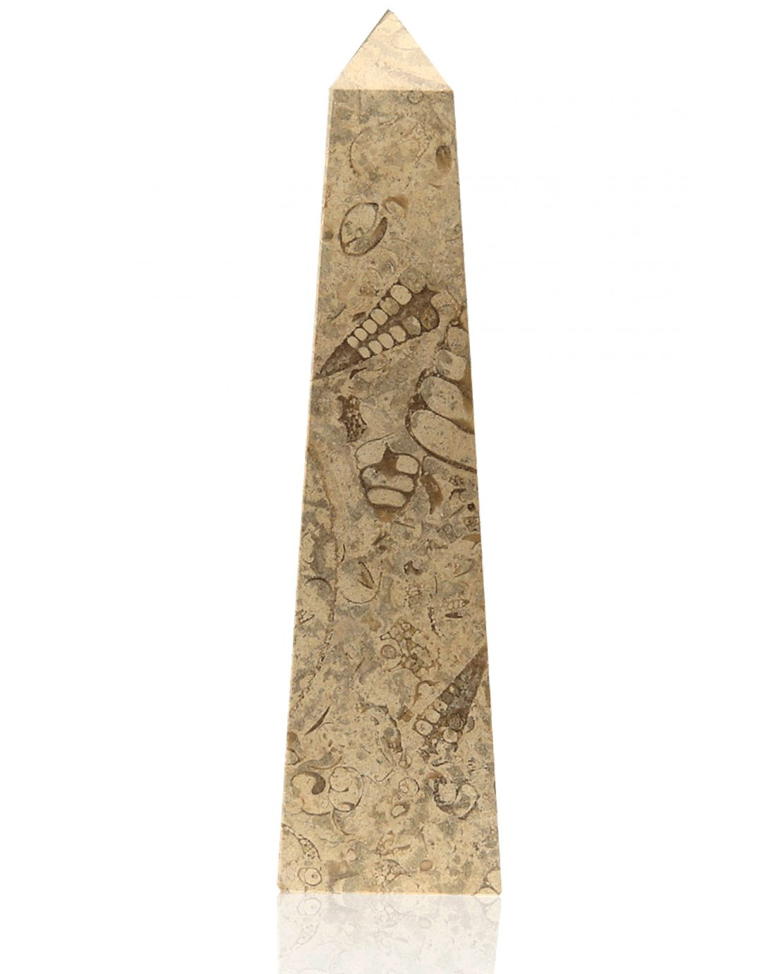 Straight Obelisk Fossil Stone