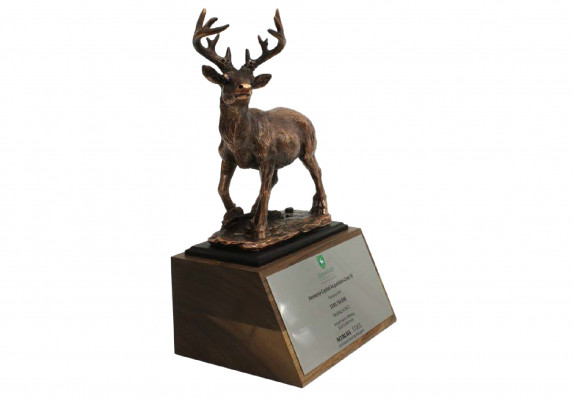 A highly detailed model stag deer in antiqued bronze mounted on a deal gift